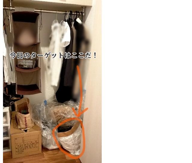 f:id:chiyohapi:20210528090905j:image