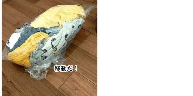 f:id:chiyohapi:20210601192749j:image