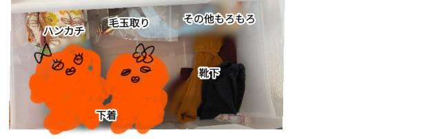 f:id:chiyohapi:20210612062328j:image