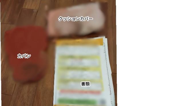 f:id:chiyohapi:20210612064123j:image
