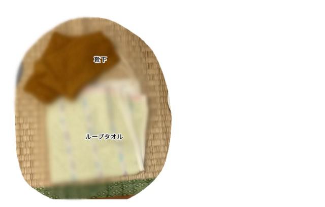 f:id:chiyohapi:20210618142319j:image