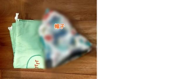 f:id:chiyohapi:20210620062549j:image
