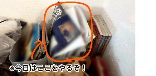 f:id:chiyohapi:20210804094702j:image