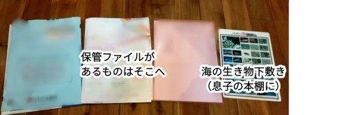 f:id:chiyohapi:20210811091833j:image