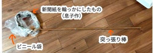 f:id:chiyohapi:20210825141901j:image