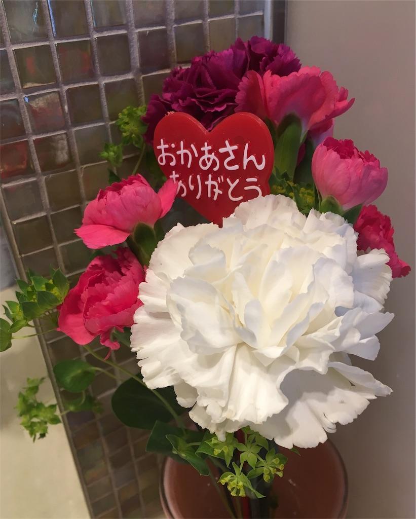 f:id:chiyokom:20170515110331j:image