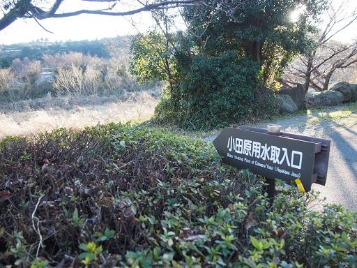 f:id:chizuchizuko:20170125231847j:plain