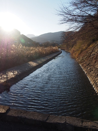 f:id:chizuchizuko:20170125232045j:plain