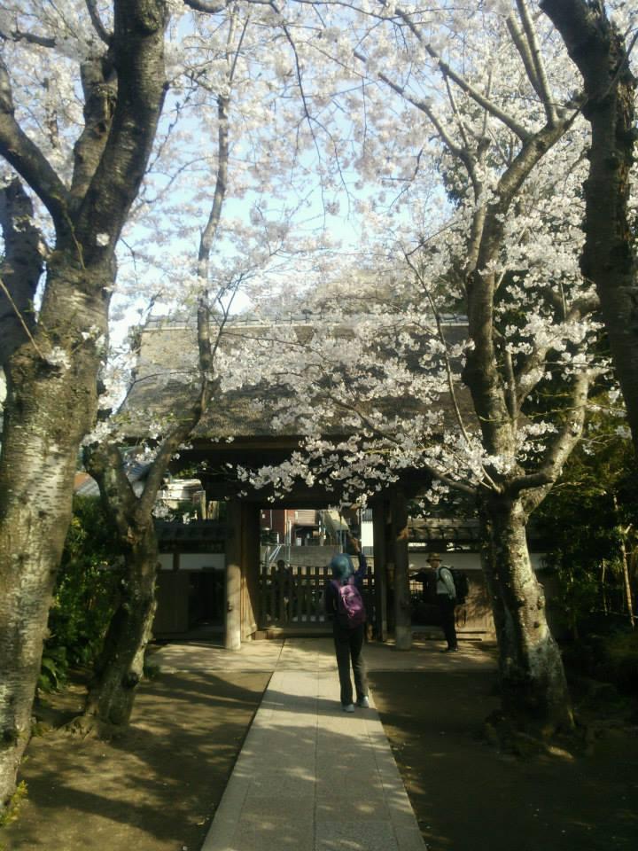 f:id:chizuchizuko:20170131230229j:plain