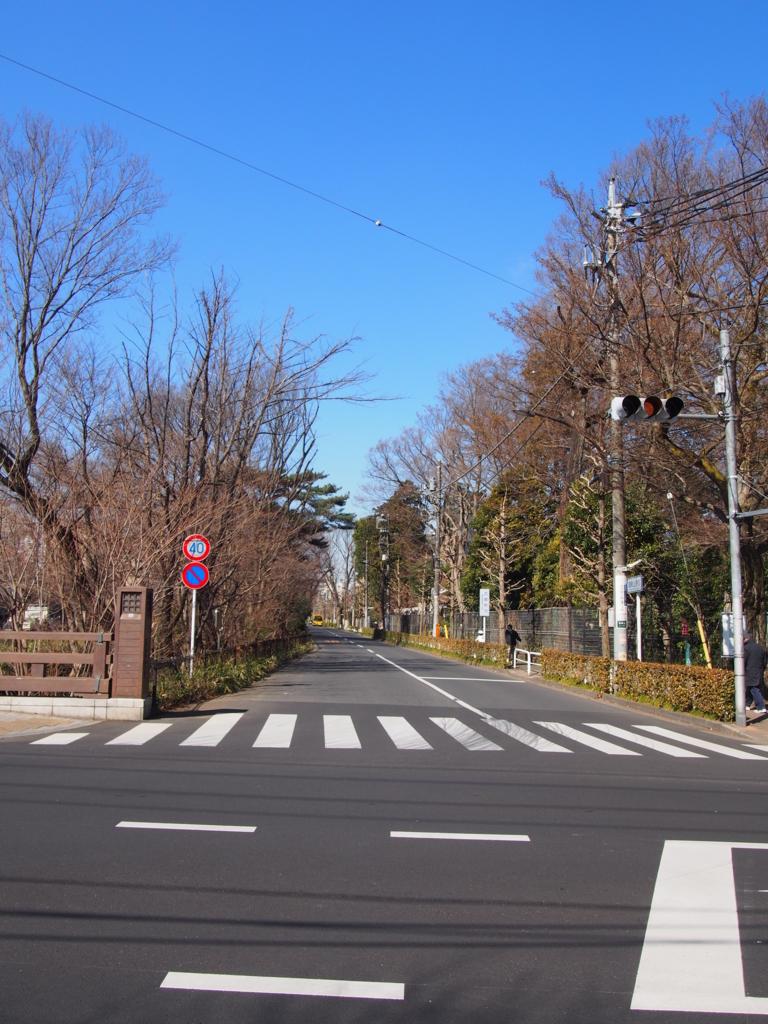 f:id:chizuchizuko:20170226192343j:plain