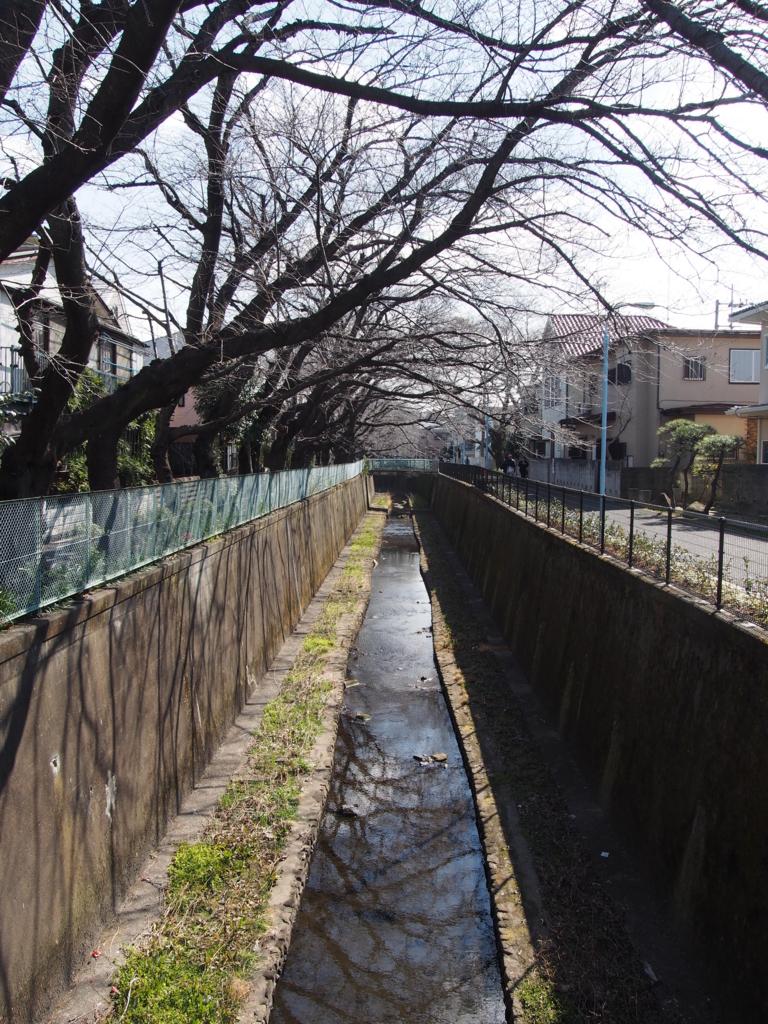 f:id:chizuchizuko:20170226195224j:plain