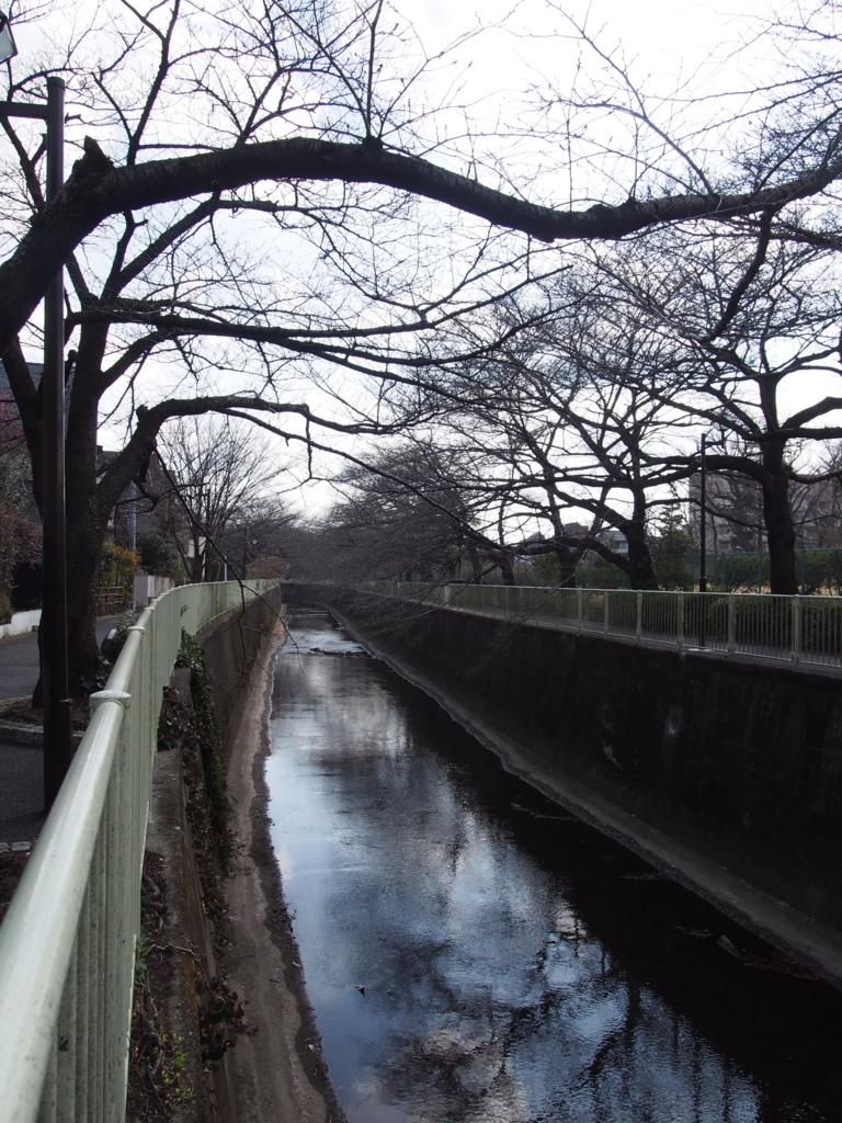 f:id:chizuchizuko:20170226201853j:plain