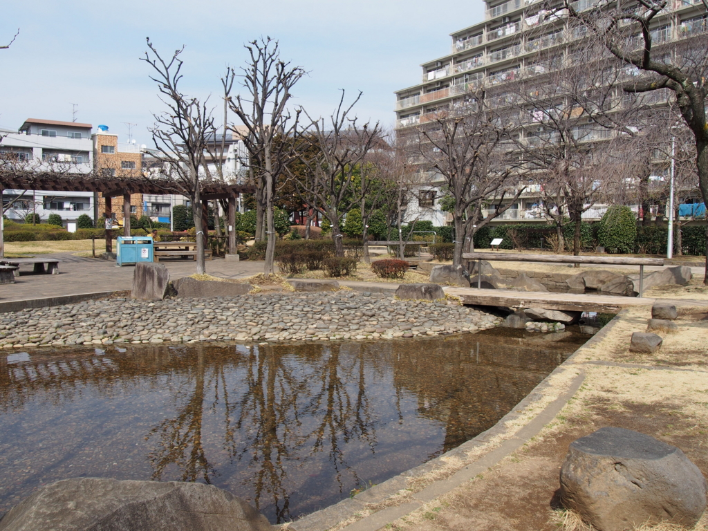 f:id:chizuchizuko:20170307205301j:plain