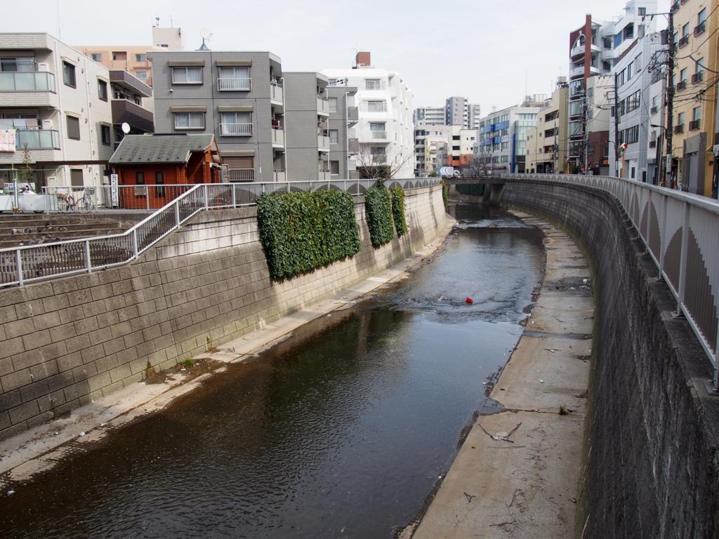 f:id:chizuchizuko:20170307210928j:plain