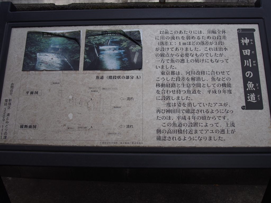 f:id:chizuchizuko:20170307211734j:plain