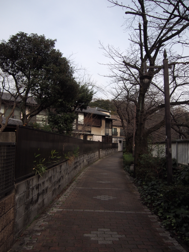 f:id:chizuchizuko:20170307212435j:plain