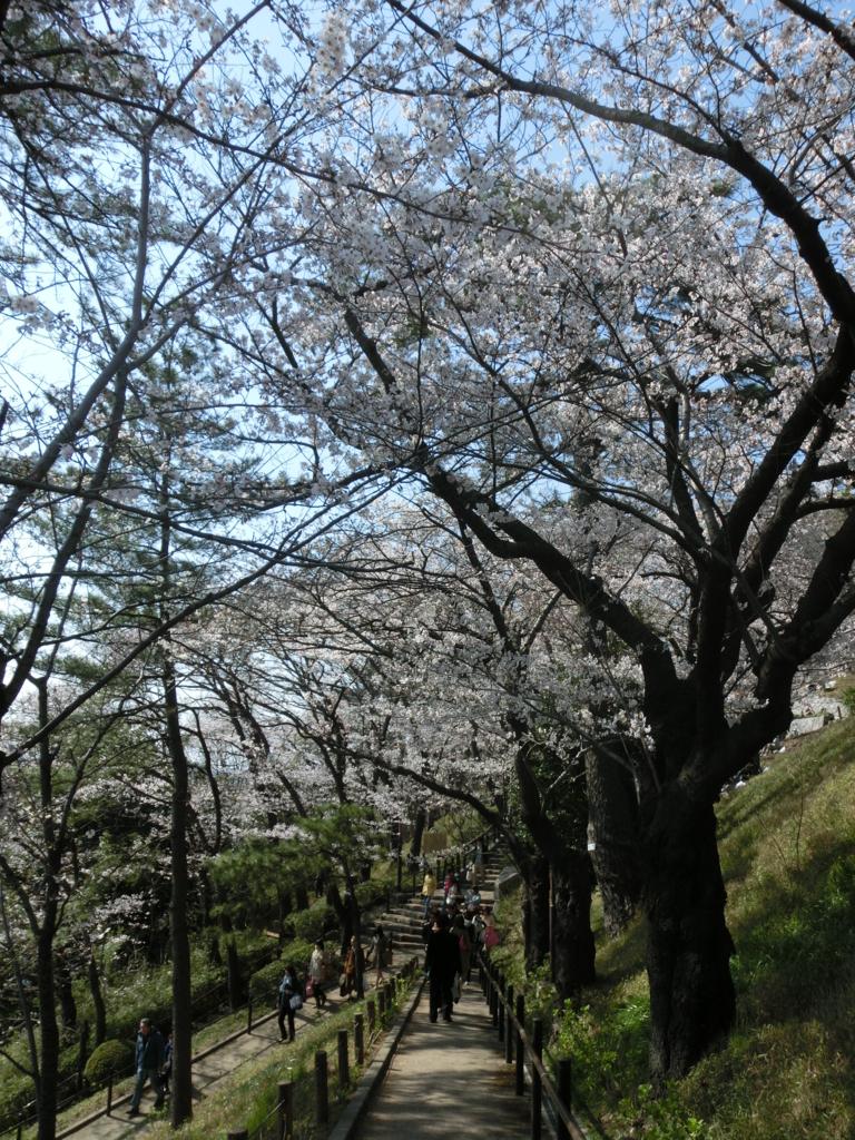 f:id:chizuchizuko:20170308004410j:plain