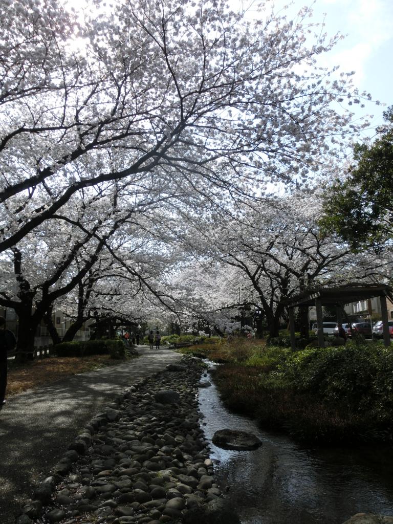 f:id:chizuchizuko:20170308004805j:plain
