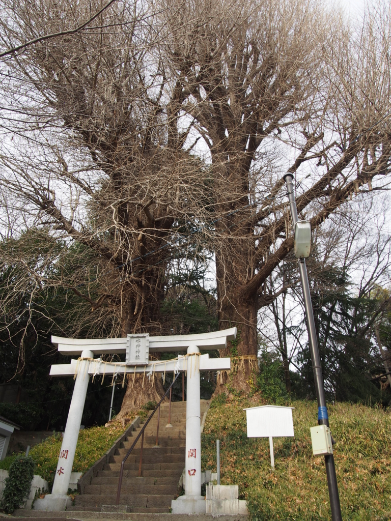 f:id:chizuchizuko:20170315222604j:plain