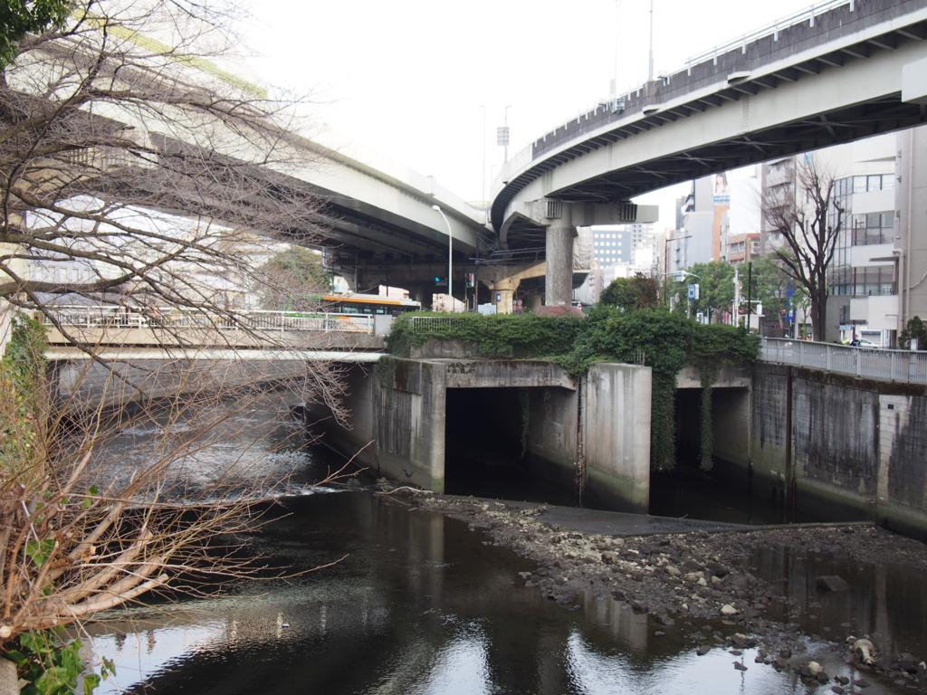 f:id:chizuchizuko:20170315230526j:plain