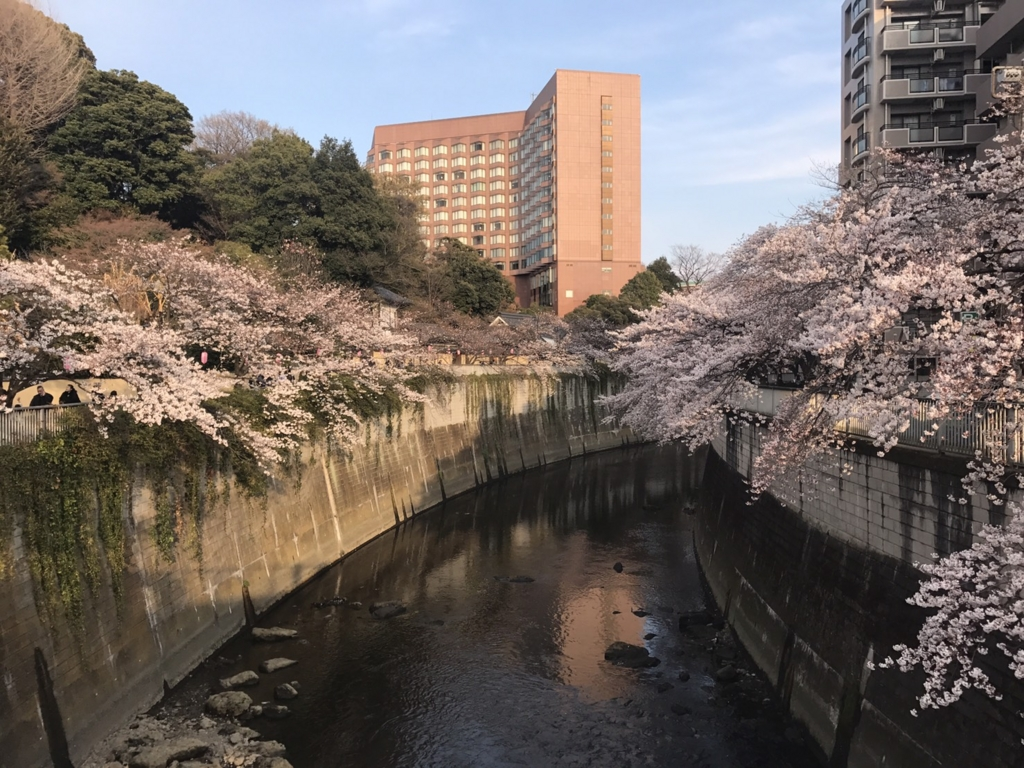 f:id:chizuchizuko:20170422113957j:plain