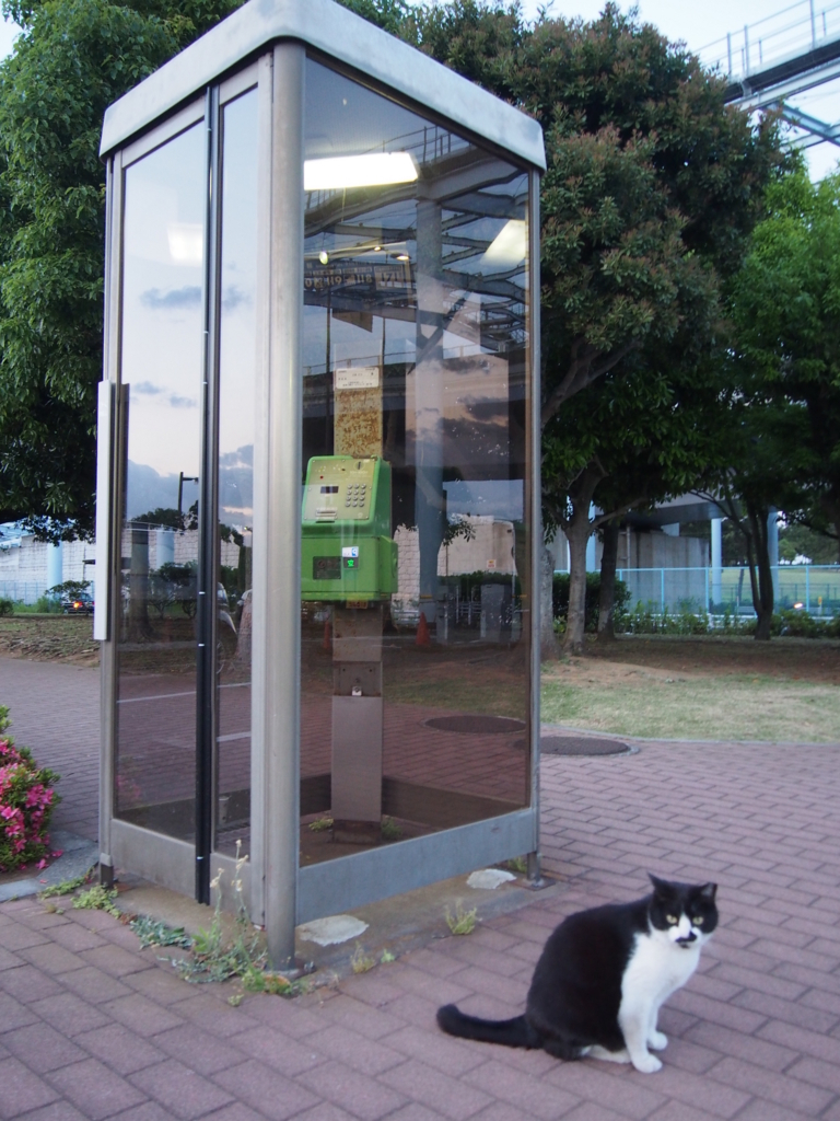 f:id:chizuchizuko:20170722004655j:plain