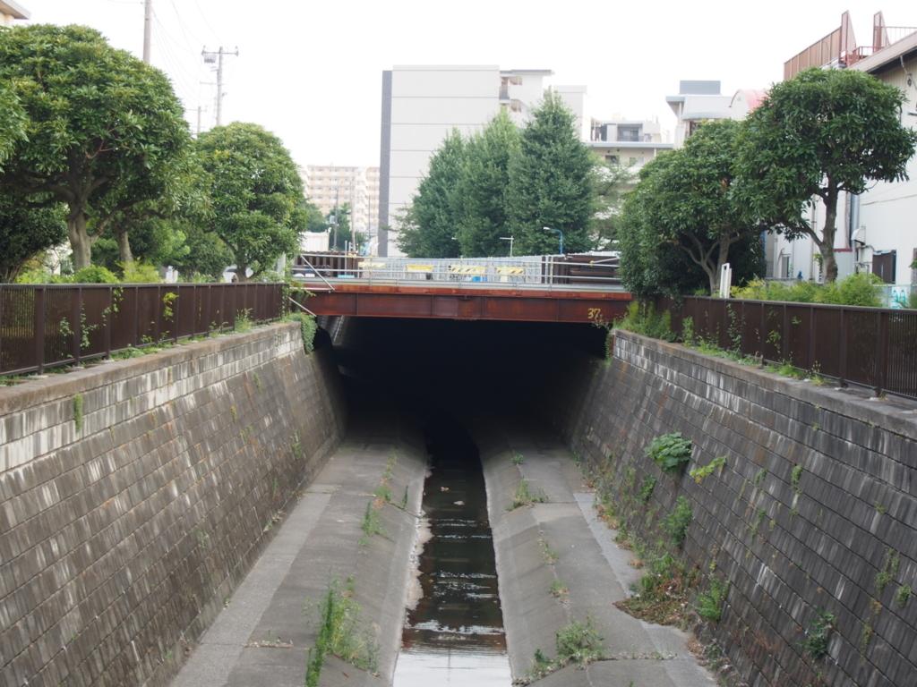 f:id:chizuchizuko:20170725223032j:plain