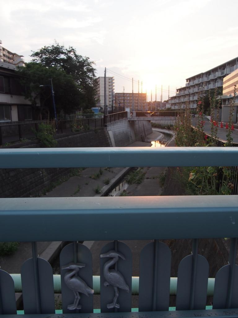 f:id:chizuchizuko:20170725224754j:plain