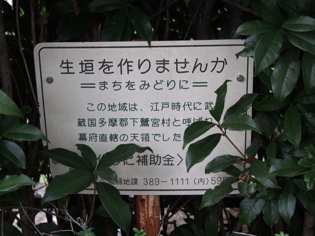 f:id:chizuchizuko:20170725224843j:plain