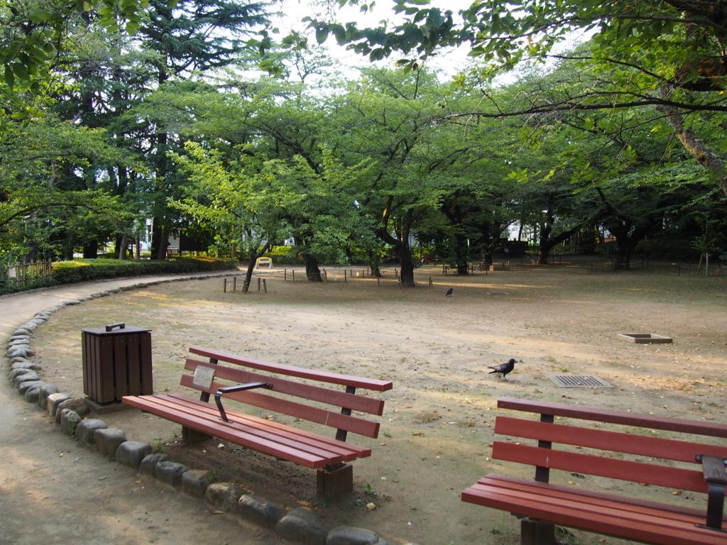 f:id:chizuchizuko:20170807001914j:plain