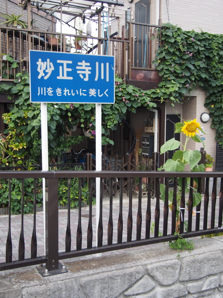 f:id:chizuchizuko:20170807002901j:plain