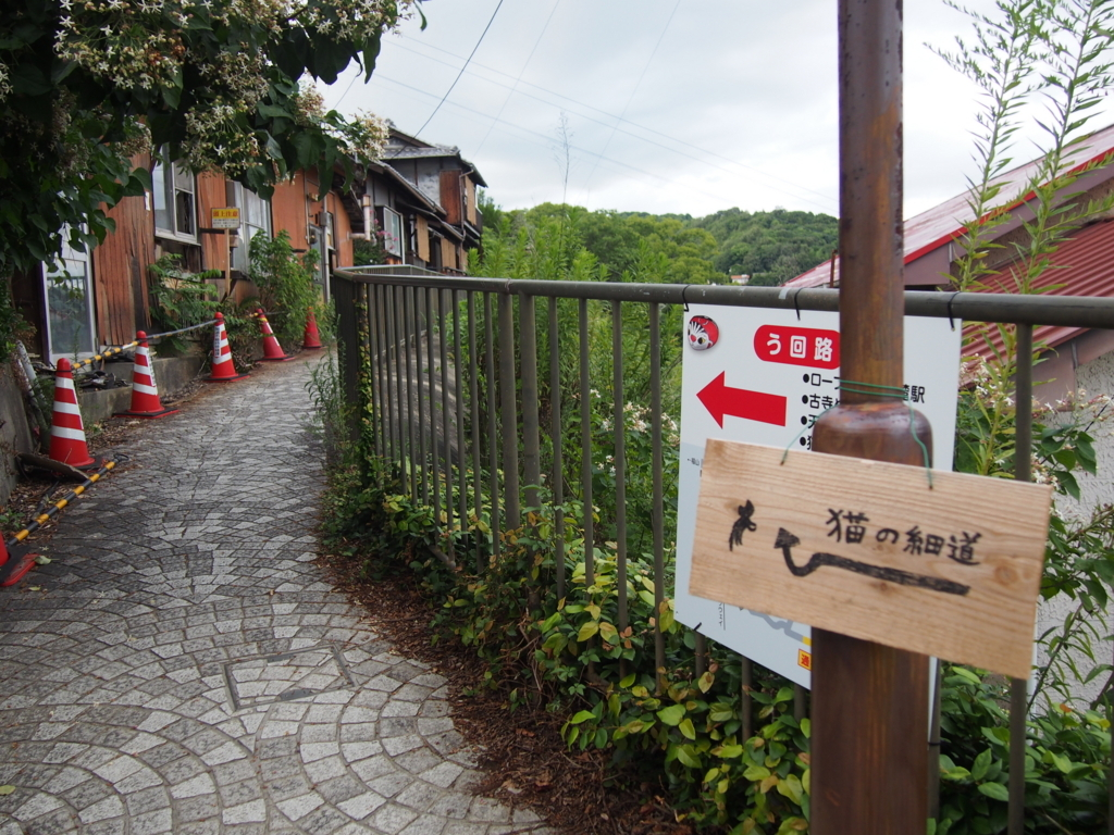 f:id:chizuchizuko:20170815232302j:plain