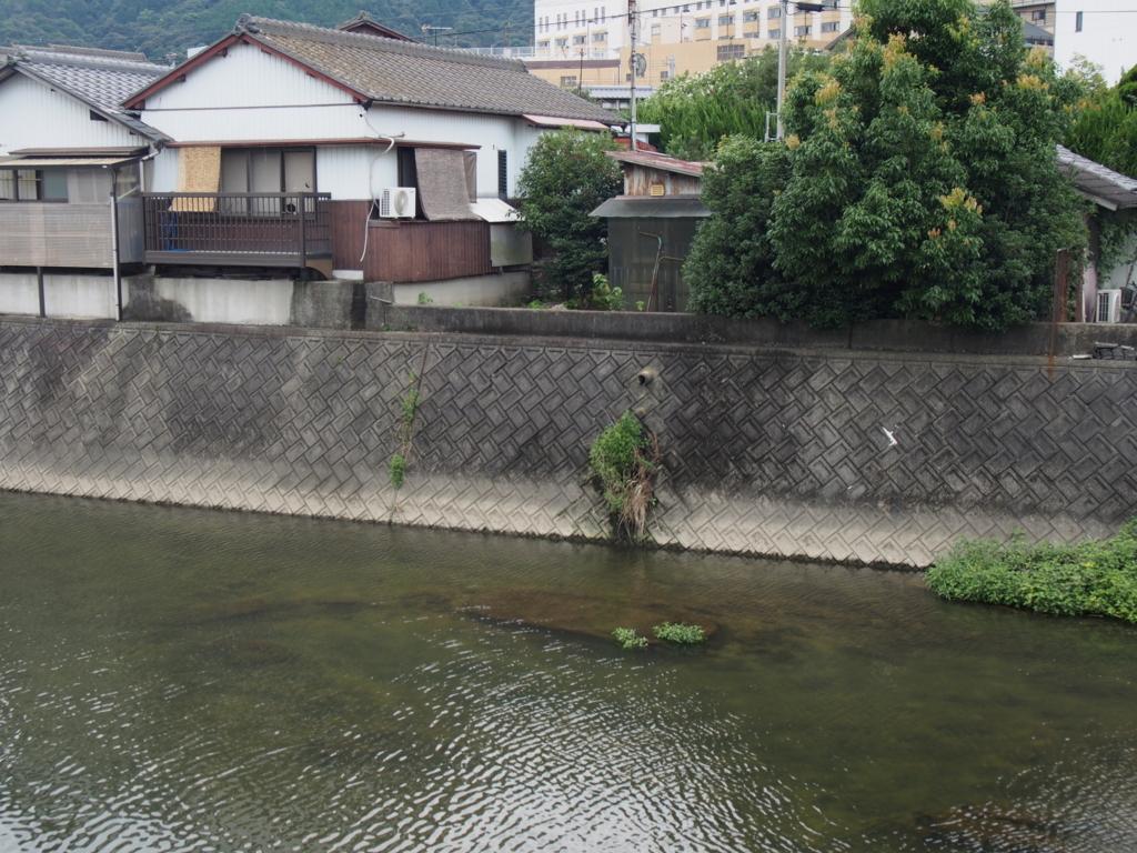 f:id:chizuchizuko:20170815235057j:plain