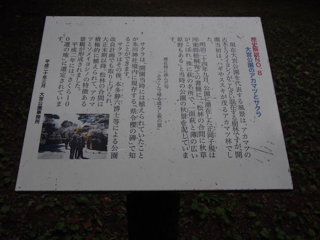 f:id:chizuchizuko:20170819124041j:plain