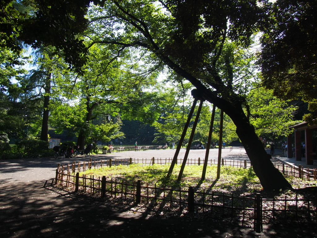 f:id:chizuchizuko:20170915231934j:plain