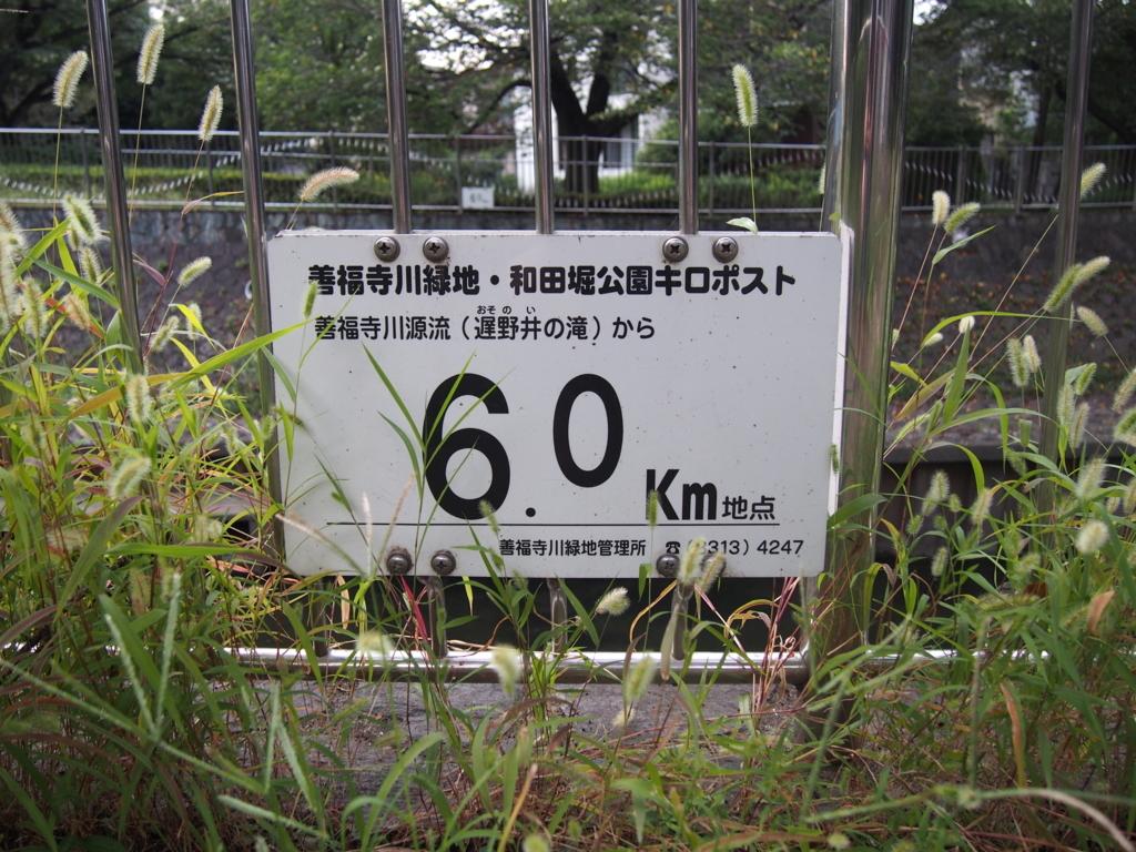f:id:chizuchizuko:20170915235546j:plain