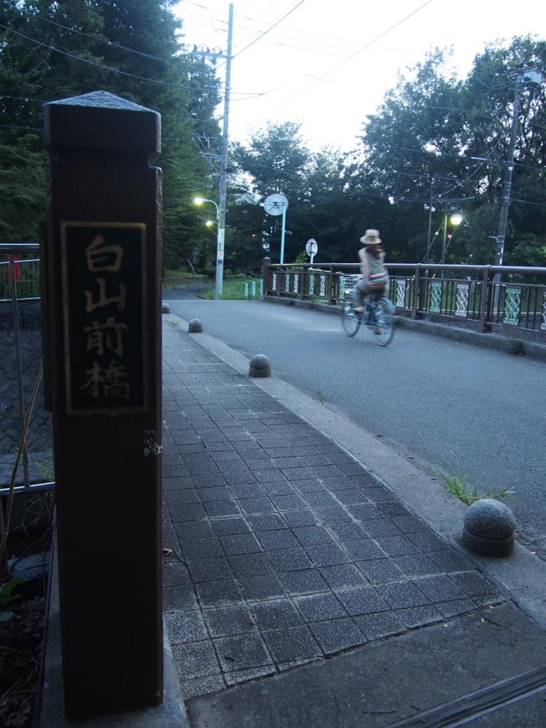 f:id:chizuchizuko:20170915235949j:plain