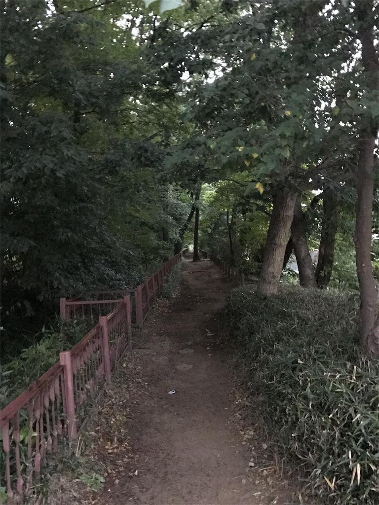 f:id:chizuchizuko:20171006174318j:image