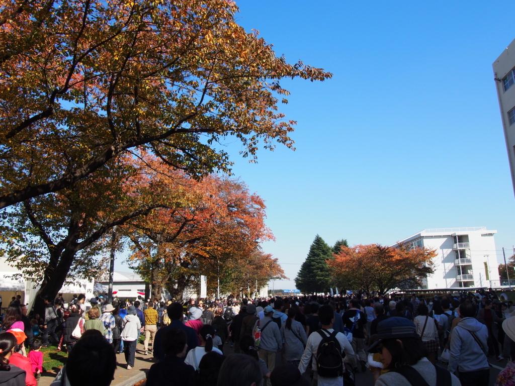 f:id:chizuchizuko:20171118163218j:plain