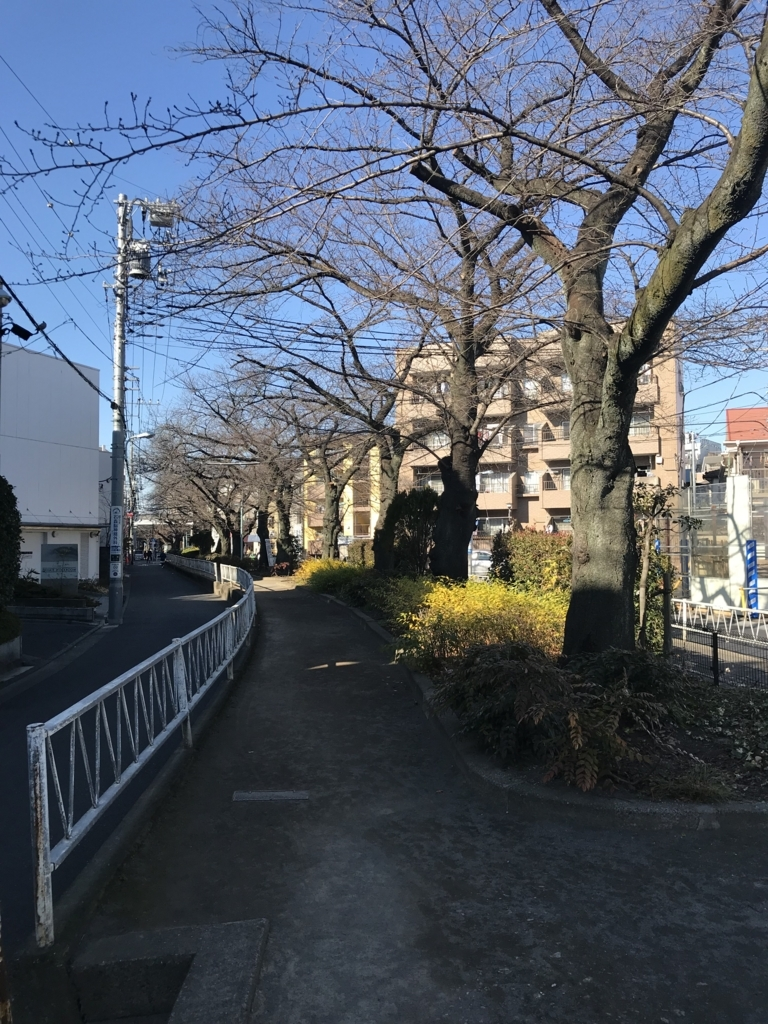 f:id:chizuchizuko:20171223174255j:plain