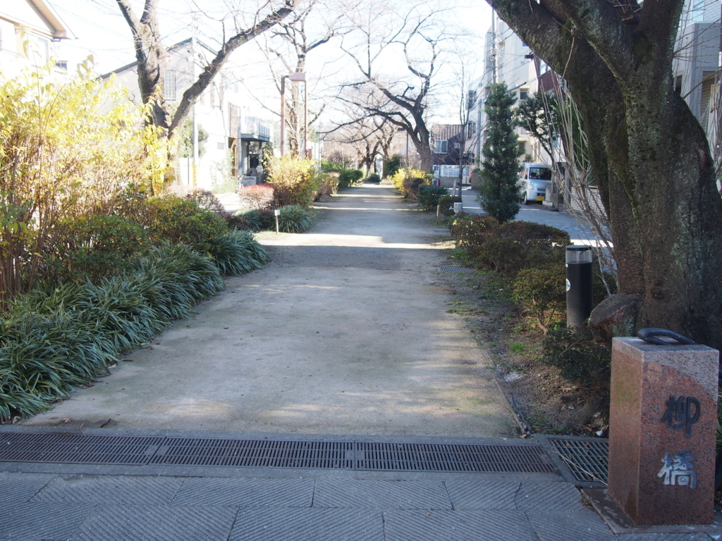 f:id:chizuchizuko:20180102121308j:plain