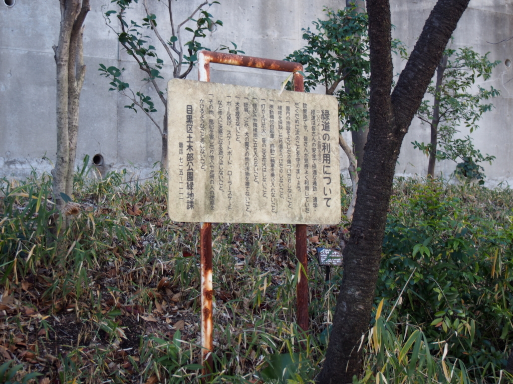 f:id:chizuchizuko:20180102124110j:plain