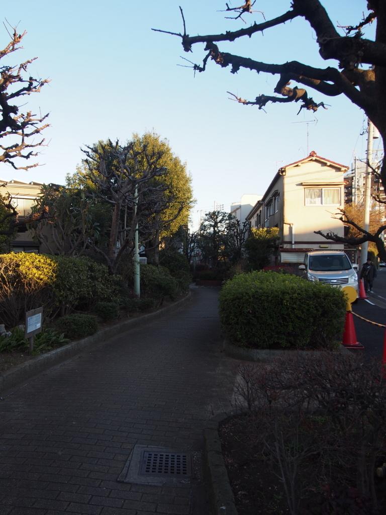 f:id:chizuchizuko:20180103123201j:plain