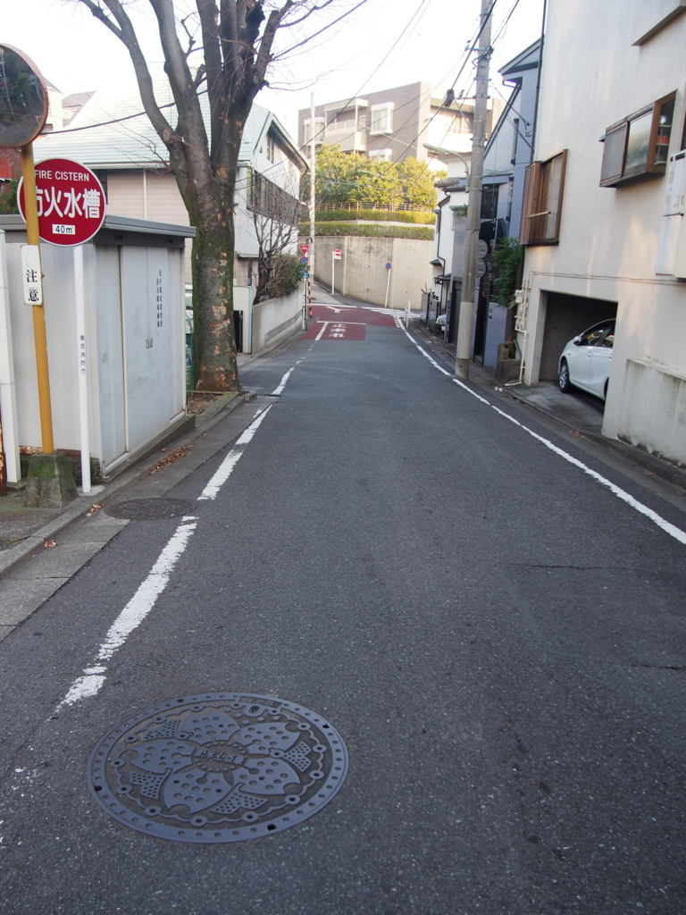 f:id:chizuchizuko:20180123215205j:plain