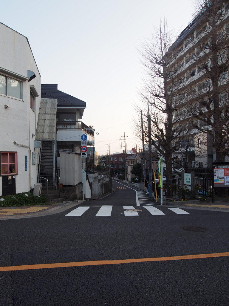 f:id:chizuchizuko:20180123215804j:plain