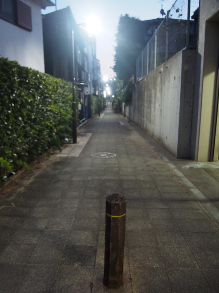 f:id:chizuchizuko:20180123225607j:plain