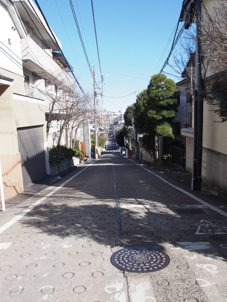 f:id:chizuchizuko:20180126223448j:plain