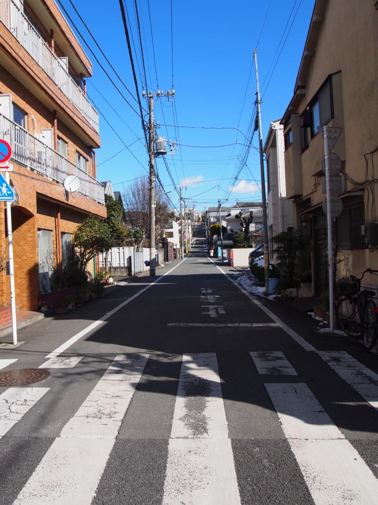 f:id:chizuchizuko:20180126225759j:plain