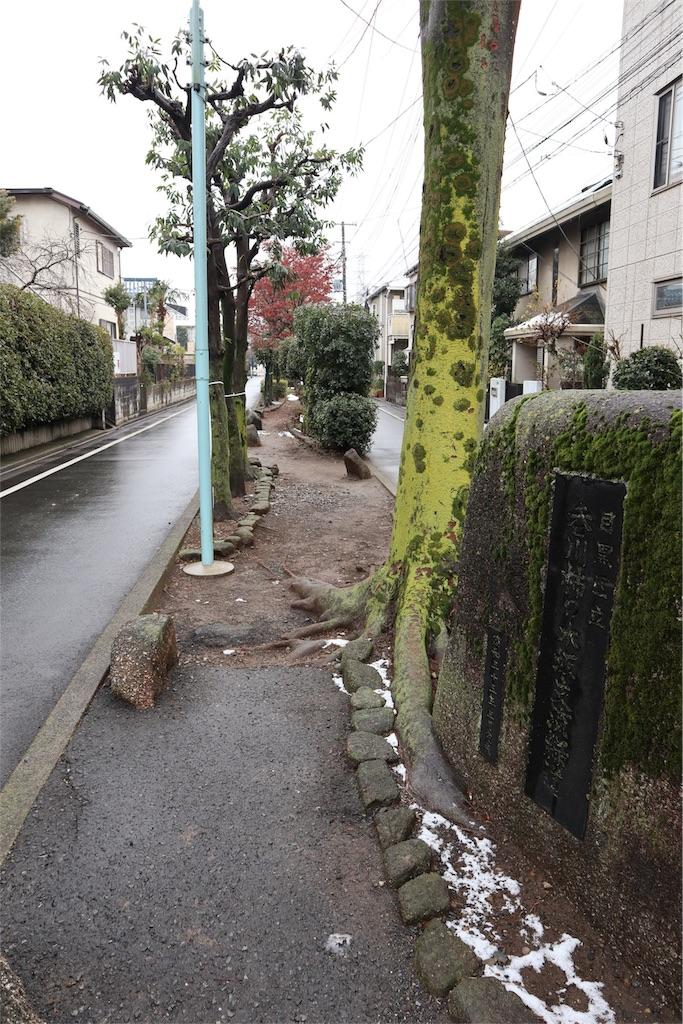 f:id:chizuchizuko:20180202135315j:image