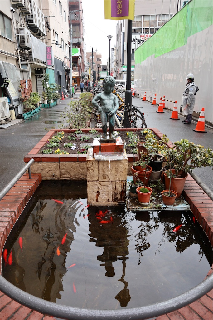 f:id:chizuchizuko:20180202135843j:image